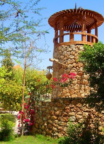 Delta Sharm Resort image33