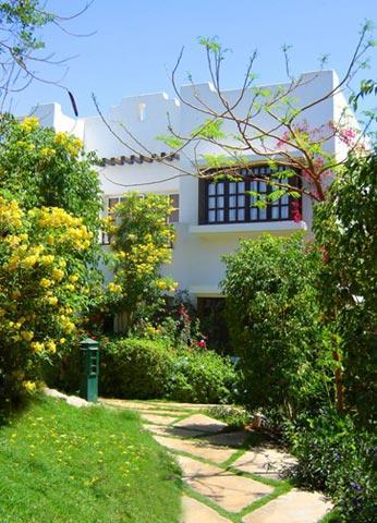 Delta Sharm Resort image34