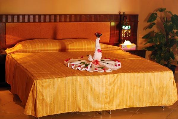 Falcon Naama Star Hotel image5