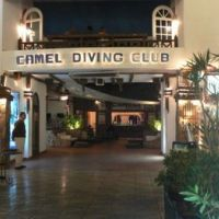 g3/3502612-camel-dive-club-0.jpg