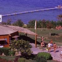 Camel Dive Club & Hotel (Boutique Hotel)