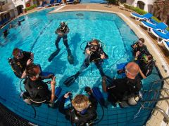 Padi learn to dive 10 days from 939$