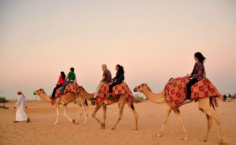 DesertSafari.jpg